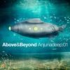Couverture de l'album Anjunadeep:01