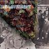 Couverture de l'album H. P. Lovecraft - Digitally Remastered