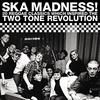 Cover of the album Ska Madness 2