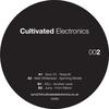 Couverture de l'album Cultivated Electronics EP002 - EP
