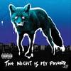 Couverture de l'album The Night Is My Friend EP