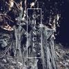 Cover of the album Chances - Single