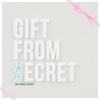 Couverture de l'album Gift From Secret - EP