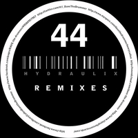 Cover of the track Hydraulix 44