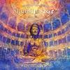 Cover of the album Buddha-Bar Classical, Zenfonia