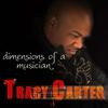 Couverture de l'album Dimensions of a Musician