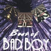 Couverture de l'album Best of Bad Boy
