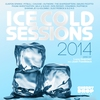 Cover of the album Ice Cold Sessions 2014 (Mixed By Luca Guerrieri aka Josh Feedblack)
