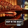 Cover of the album Deep in the Night!, Vol. 4 - A Jazz House Experience