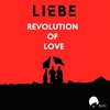 Cover of the track Revolution of Love