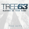 Couverture de l'album Blessed Be Your Name: The Hits