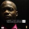 Couverture de l'album Reconciliation