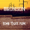 Cover of the album Roma Tiger Punk