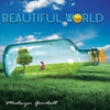 Couverture de l'album Beautiful World