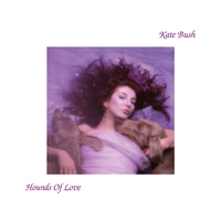 Cover of the track Hounds of Love