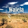 Cover of the album The Best of Walela