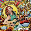 Cover of the album Chasing the Flame - On the Road With Trevor Hall (Live)