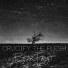 Cover of the album Bear Fruit