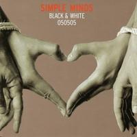 Couverture du titre Black & White 050505