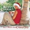 Couverture de l'album All I Want for Christmas Is a Real Good Tan
