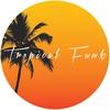Couverture de l'album Tropical Funk - EP