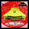 Couverture de l'album Flying Wonders
