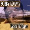 Couverture de l'album Desert Trippin'