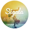 Cover of the album Give Me Your Love (feat. John Newman & Nile Rodgers) - Single