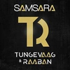 Couverture du titre Samsara