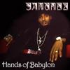 Couverture de l'album Hands of Babylon