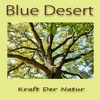 Couverture de l'album Kraft Der Natur - Single