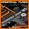 Cover of the album Essential Tunes - Progressive Dream 90'S