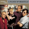 Cover of the album Platinum & Gold Collection: A Flock of Seagulls