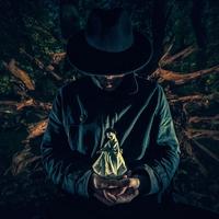 Couverture du titre The Dark Side of the Acid Forest - Single