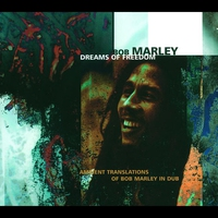 Couverture du titre Dreams of Freedom: Ambient Translations of Bob Marley in Dub