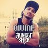 Couverture de l'album Jungli Sher - Single