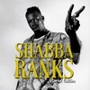 Cover of the album Shabba Ranks: Special Edition (Deluxe Version) - EP