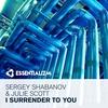 Couverture de l'album I Surrender to You - Single