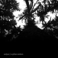 Couverture du titre A Sylvan Venture - Single