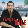 Cover of the album Amar Gile