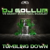 Cover of the track Tumbling Down (House Remix)