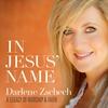 Couverture de l'album In Jesus' Name: A Legacy Of Worship & Faith