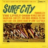 Cover of the album Surf City