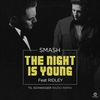 Cover of the track The Night Is Young (feat. Ridley) [Til Schweiger Radio Remix]