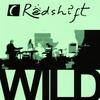 Couverture de l'album Wild
