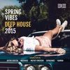 Cover of the album Spring Vibes 2015