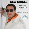 Cover of the track Te Vor Imanas