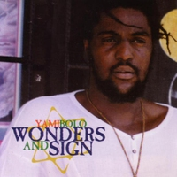 Cover of the track Wonders & Sign