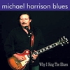 Cover of the album Why I Sing the Blues