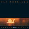 Couverture de l'album Avalon Sunset